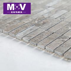 MV-S040