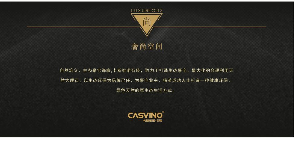 卡斯维诺 直板 CS406 04